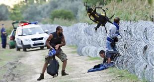 هجرةن اللاجئين